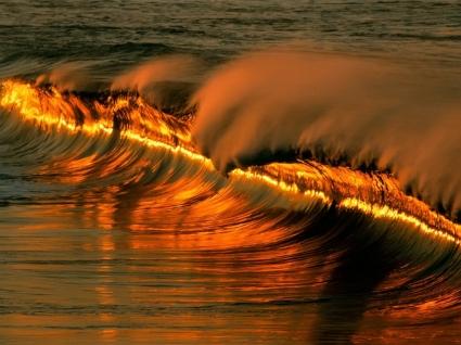 Golden Wave Wallpaper Other Nature