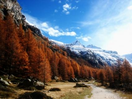 Gran Paradiso Wallpaper Landscape Nature