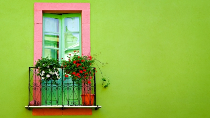 Green Wall Window