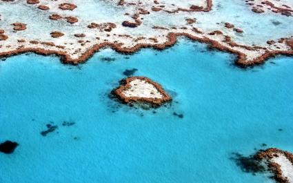 Heart Reef Great Barrier Reef