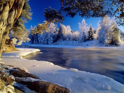 Icy river Wallpaper Winter Nature
