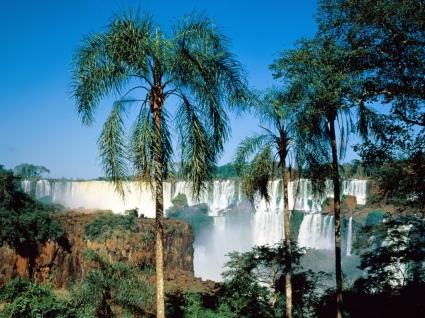 Iguassu Falls Argentina Wallpaper Waterfalls Nature