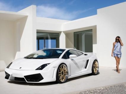IMSA Lamborghini Gallardo Wallpaper Lamborghini Cars