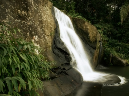 Jungle Waterfall Wallpaper Landscape Nature