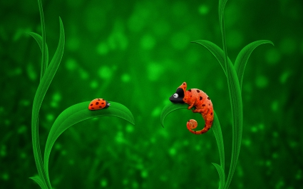 Ladybug Chameleon