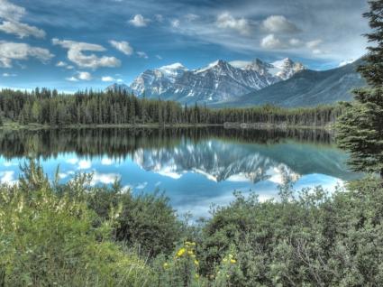 Lake Herbert Wallpaper Landscape Nature