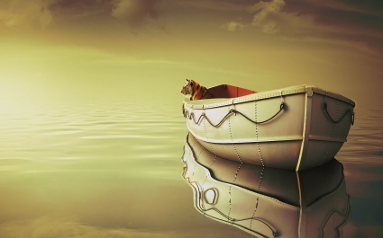 Life Of Pi Boat Tiger