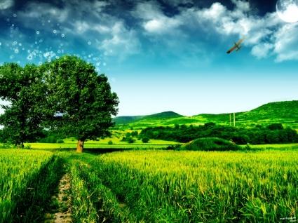 Magic Tree Wallpaper Photo Manipulated Nature