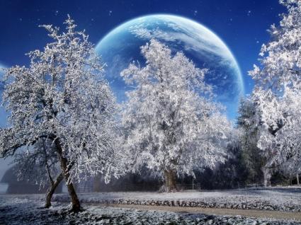 Magic Winter Wallpaper Photo Manipulated Nature