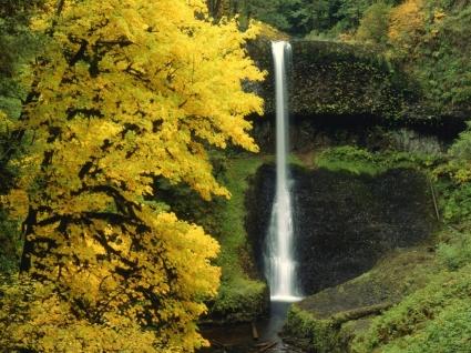Middle North Falls Wallpaper Waterfalls Nature