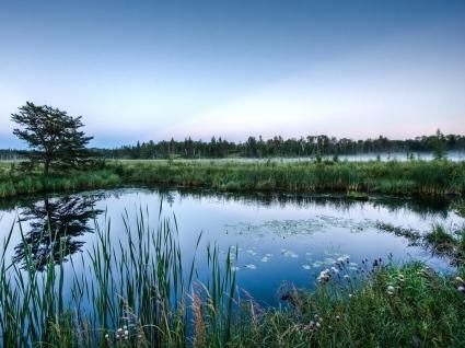 Mirror Glass Pond