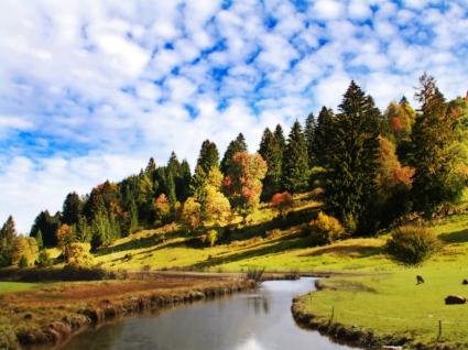 Peaceful Wallpaper Landscape Nature