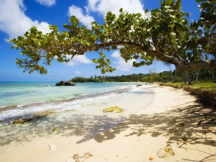 Playa Rincon Wallpaper Beaches Nature