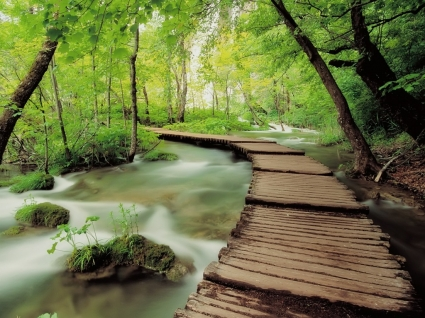 Plitvice National Park Wallpaper Croatia World