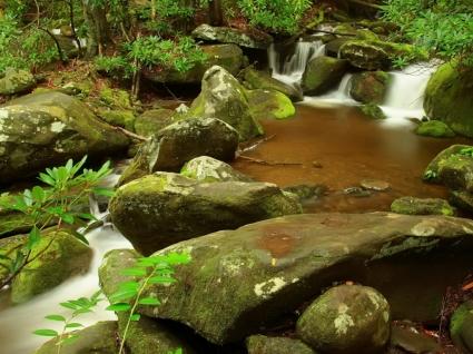 Pond Wallpaper Rivers Nature