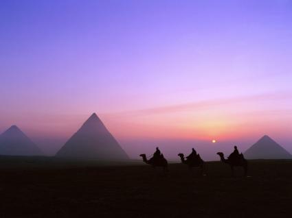 Pyramids Wallpaper Egypt World