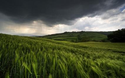 Rain is coming Wallpaper Landscape Nature