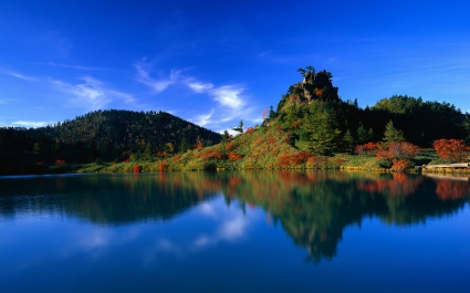 Reflection of Autumn Trees