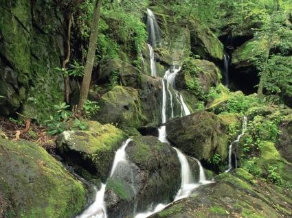 Roaring Fork Wallpaper Waterfalls Nature