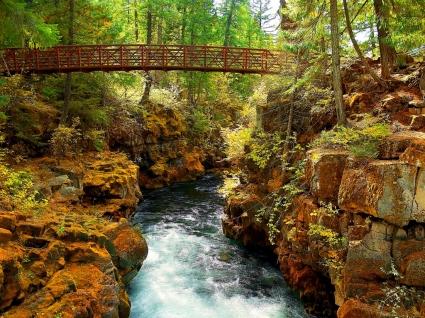 Rogue River Gorge Wallpaper Rivers Nature