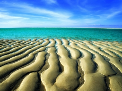 Sand Ripples Wallpaper Beaches Nature