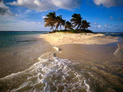 Sandy Island Caribbean