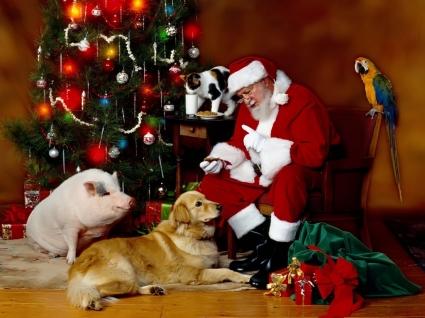 Santa Klaus Wallpaper Christmas Holidays