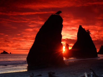 Sea Stacks Knife a Blood Red Sky