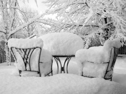 Snow Reception Wallpaper Winter Nature