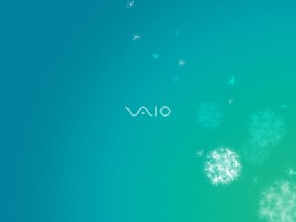 Sony VAIO 10