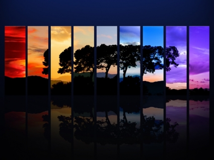 Spectrum of a Tree Wallpaper Photo Manipulated Nature
