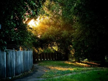 Spot of Light Wallpaper Landscape Nature
