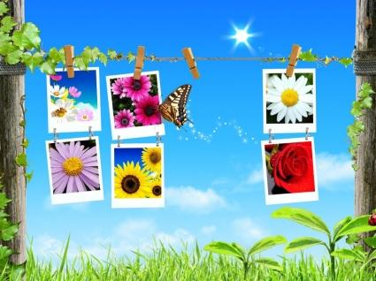 Spring Collage Wallpaper Spring Nature