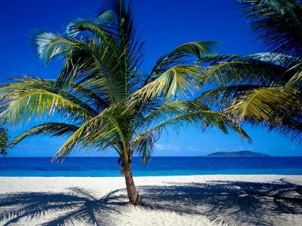 St. Croix US Virgin Islands
