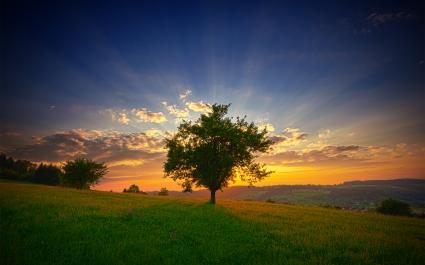 Swis Landscape Sunset