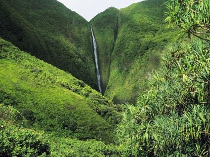 Tall Waterfall Wallpaper Waterfalls Nature