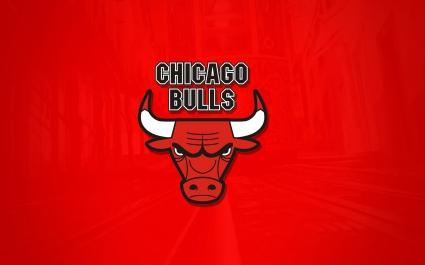 The Chicago Bulls