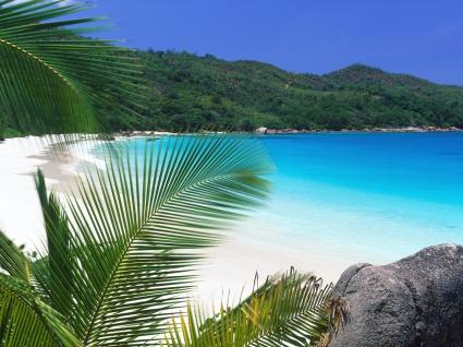 Tropical Retreat Beach