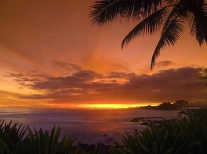 Tropical Sunset Wallpaper Landscape Nature
