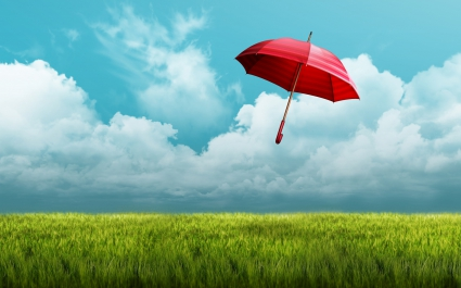 Umbrella Fields