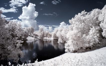 Vigeland Sculpture Park Norway
