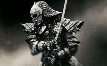 Warrior in 47 Ronin