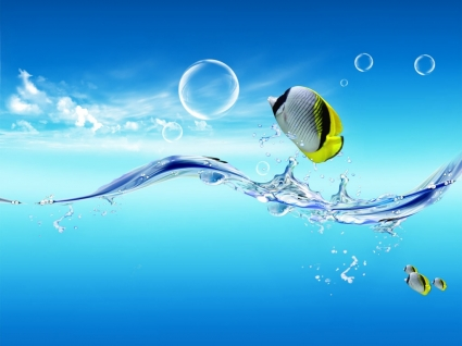 Waterlife Wallpaper Fish Animals