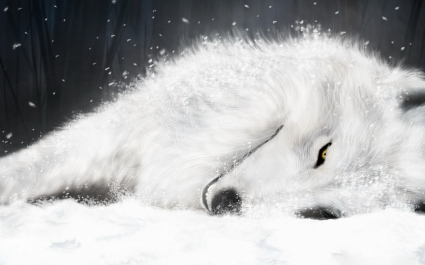 White Fox in ICE