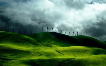 Wind Turbine Fields