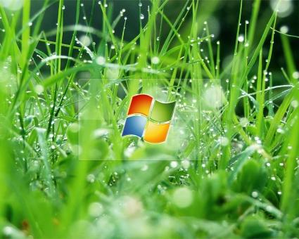 Windows Glass Effect