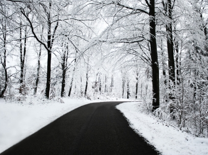 Winter Road Wallpaper Winter Nature