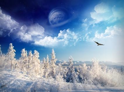 Winter worderland Wallpaper Winter Nature