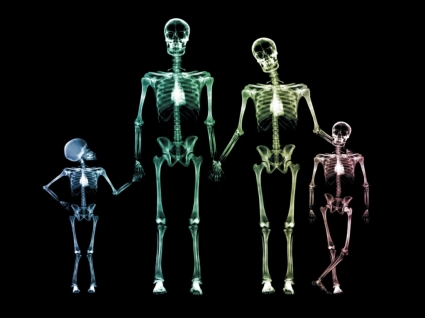 X Ray Family Wallpaper X Ray 3D