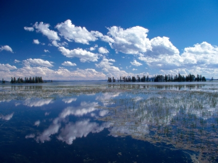 Yellowstone Lake Wallpaper Landscape Nature